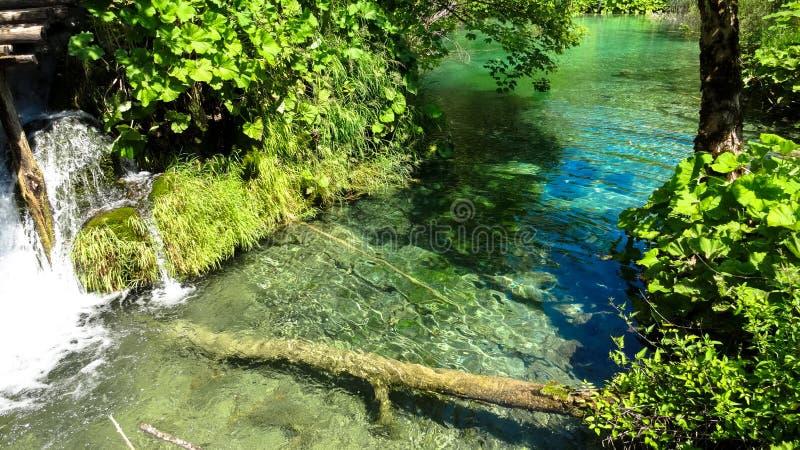 Download Lacs Plitvice image stock. Image du été, dust, intact - 76080531