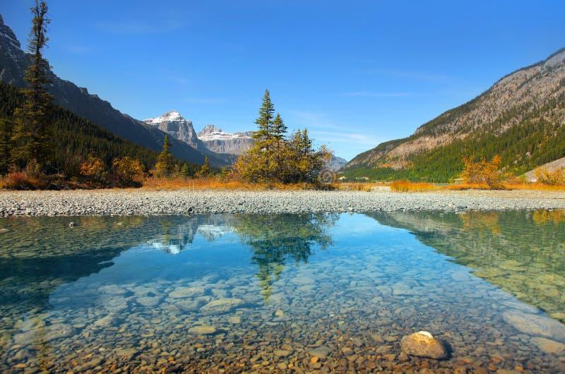 Lacs waterfowl en parc national de Banff images libres de droits