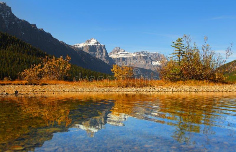 Lacs waterfowl en parc national de Banff photo stock