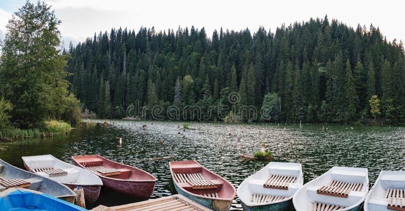 Lacu Rosu or Red lake in Romania royalty free stock photos