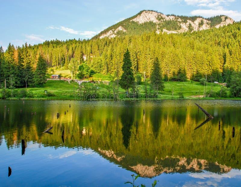 Lacul Rosu lizenzfreies stockbild
