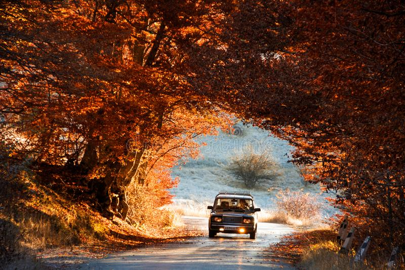 LADA 2107 O carro conduz através de um arco bonito de árvores do outono fotografia de stock royalty free