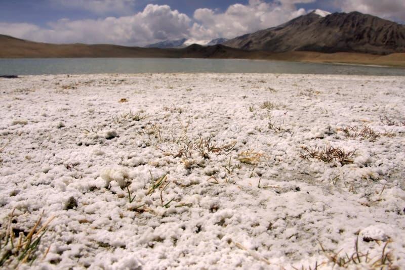 ladakh jeziora sól zdjęcia royalty free