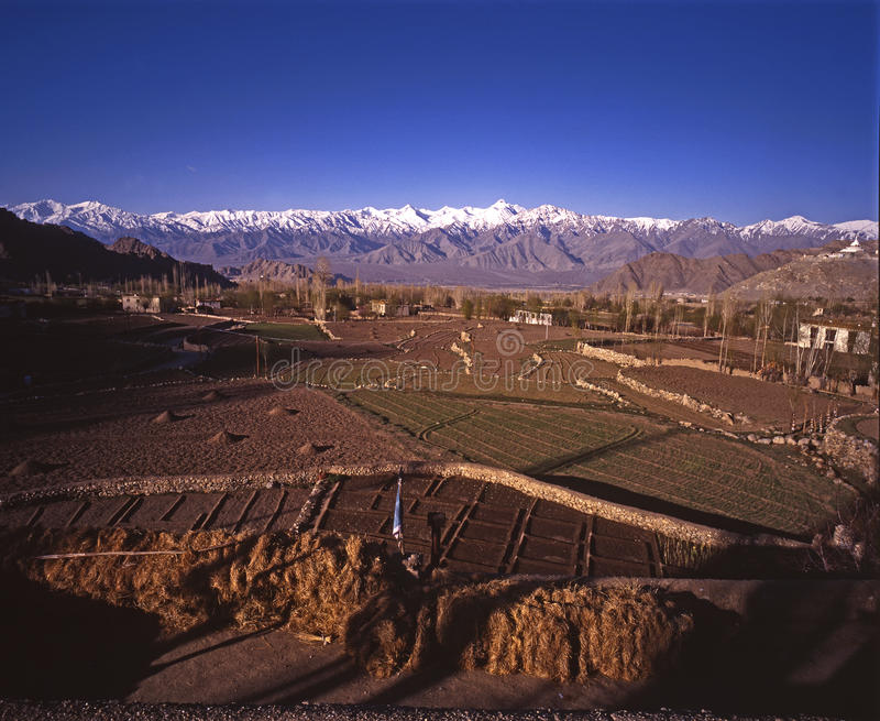 ladakh leh άνοιξη στοκ εικόνα με δικαίωμα ελεύθερης χρήσης