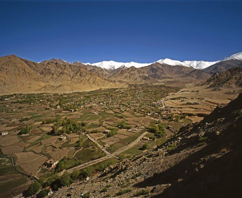 ladakh wiosna zdjęcie stock