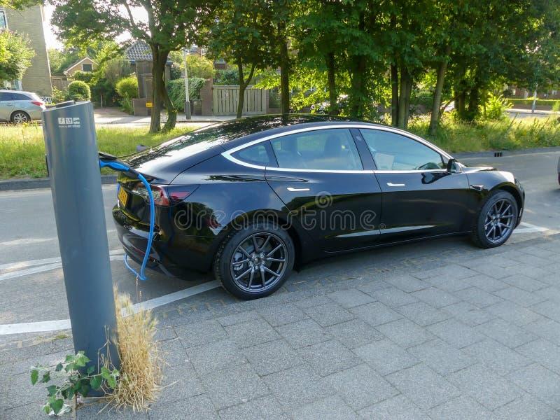 Laddande batterier för Tesla modellelbil på proppen i laddningsstation i lövrik grön förort i Nederländerna royaltyfri fotografi