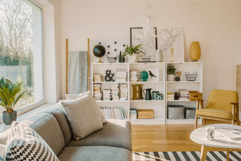 Ladder with blanket standing next to white wooden rack with decor, books and plants in bright living room interior with grey stock images