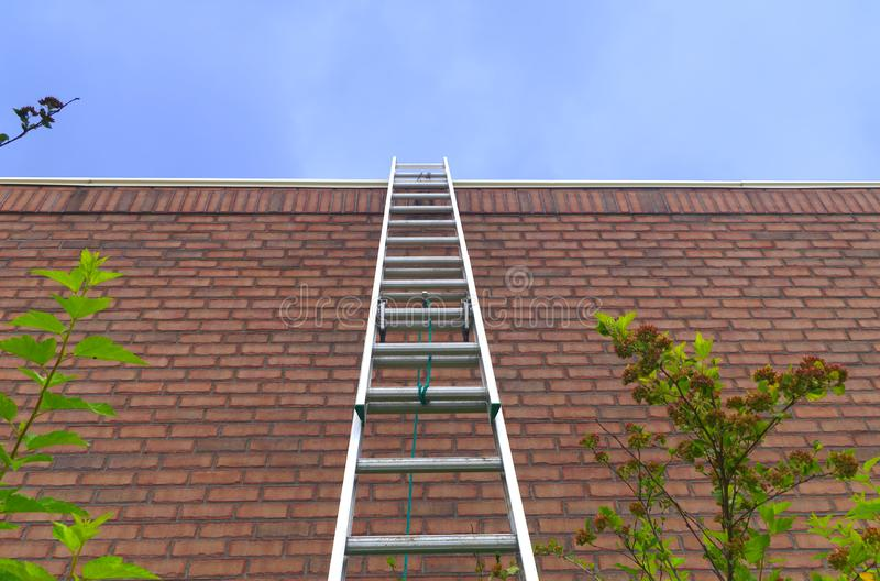 Ladder red brick wall freedom concept aspirations goals motivation success business opportunity blue sky stock images