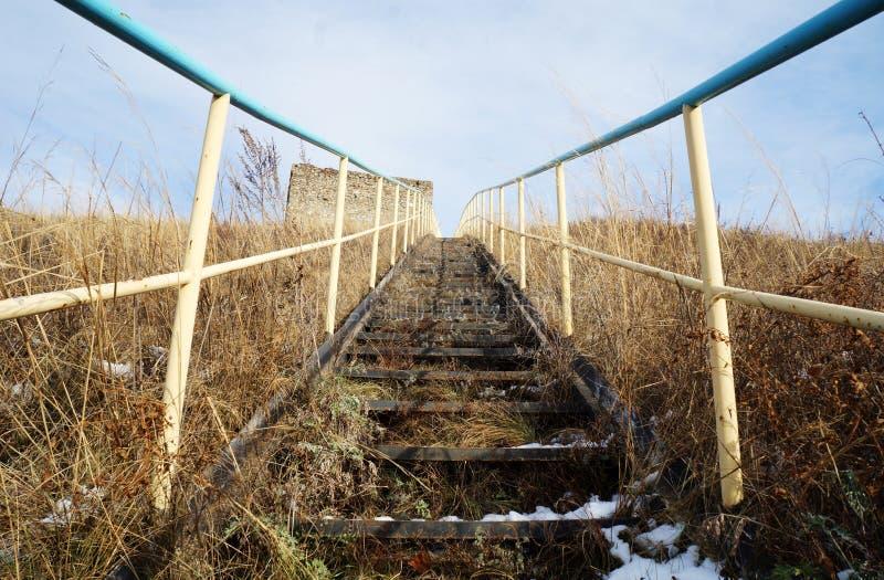 Ladder op een berg! stock afbeelding
