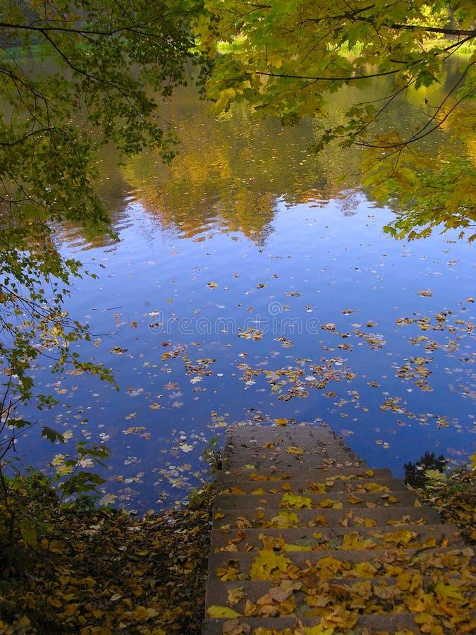 Ladder to autumn lake stock image