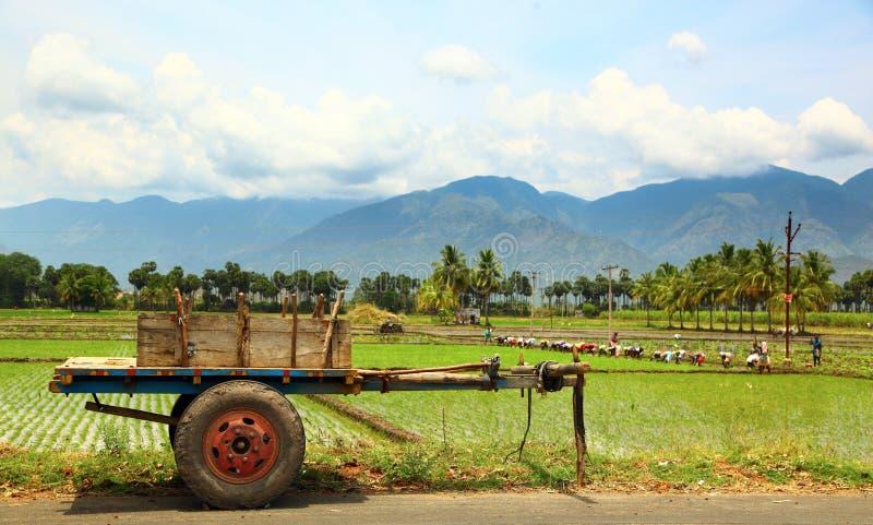Laddylandbouwers stock foto's