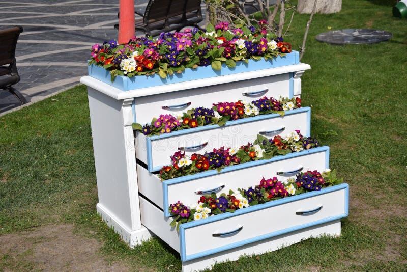 Ladenkast met bloemen stock afbeelding