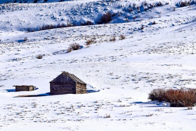 Ladera nevada de Colorado con la cabina en invierno fotografía de archivo libre de regalías