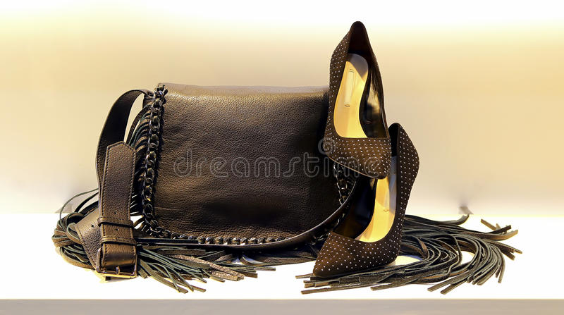 Ladies leather hand bag and shoes stock image