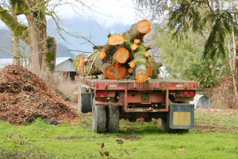 Lading van Timmerhout op Vrachtwagenaanhangwagen royalty-vrije stock fotografie