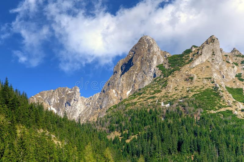 Ladnscape горы весны стоковые фото
