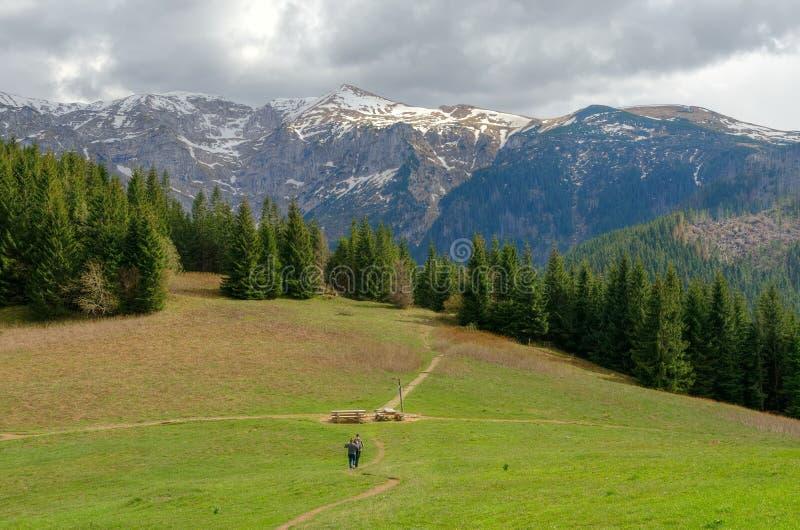 Ladnscape горы весны стоковые изображения rf