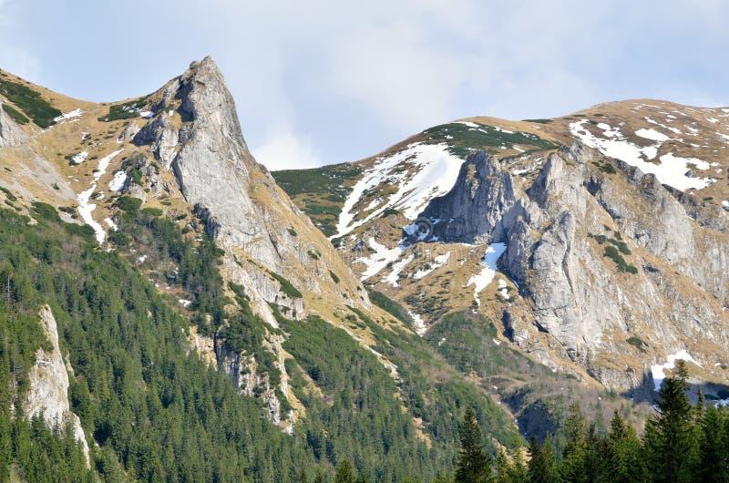 Ladnscape da montanha da mola fotografia de stock