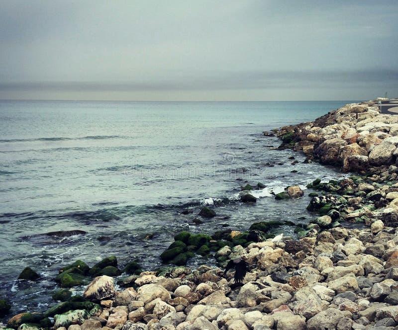 lado de mar fotos de stock royalty free