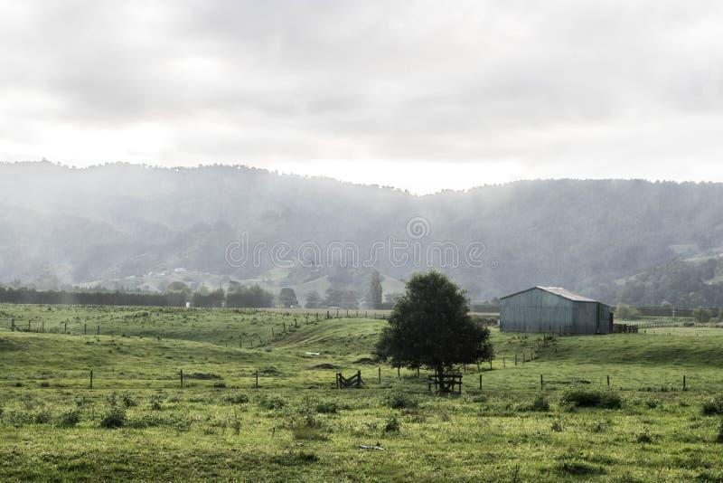 Lado del país de Nueva Zelanda fotos de archivo libres de regalías
