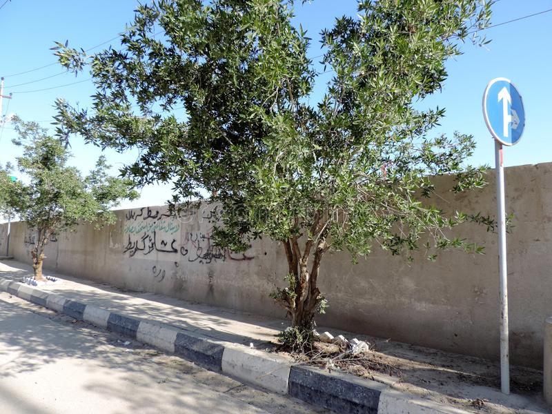 Lado del país en Kerbala, Iraq fotos de archivo libres de regalías