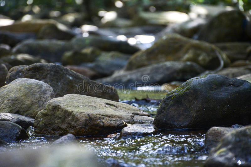 Lado del río fotografía de archivo libre de regalías