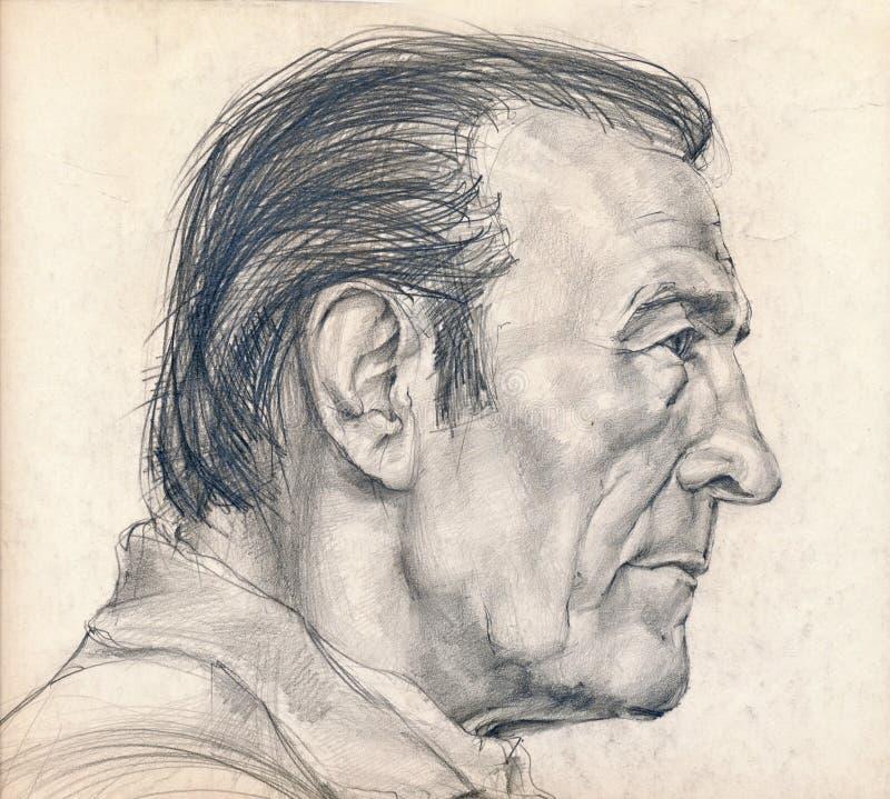 Lado direito da face do homem ilustração royalty free