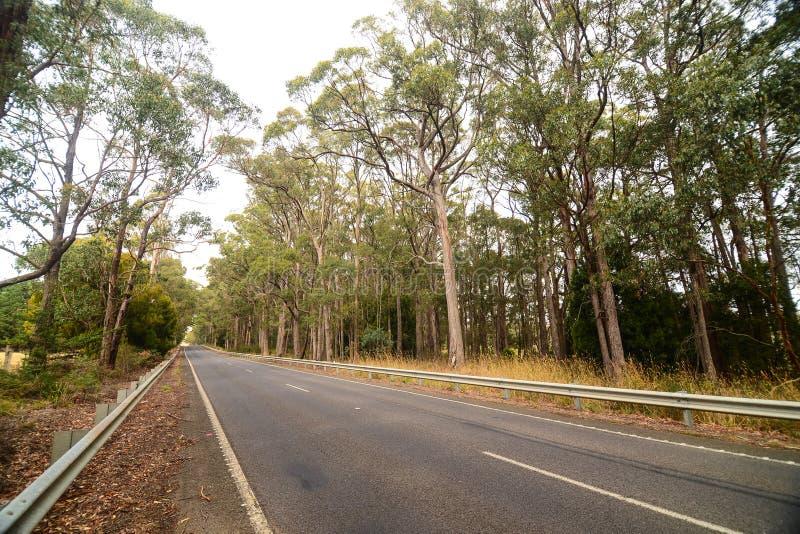 Lado do país ao longo da estrada em Austrália foto de stock royalty free