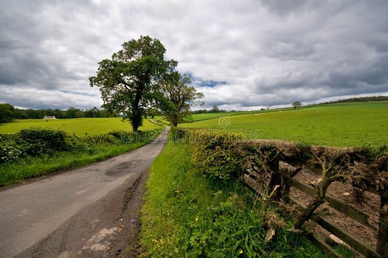 Lado escocês do país imagens de stock royalty free