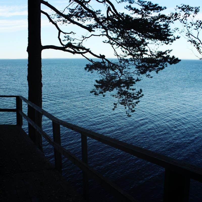 ladoga湖 从一个木平台的看法 Valaam 图库摄影