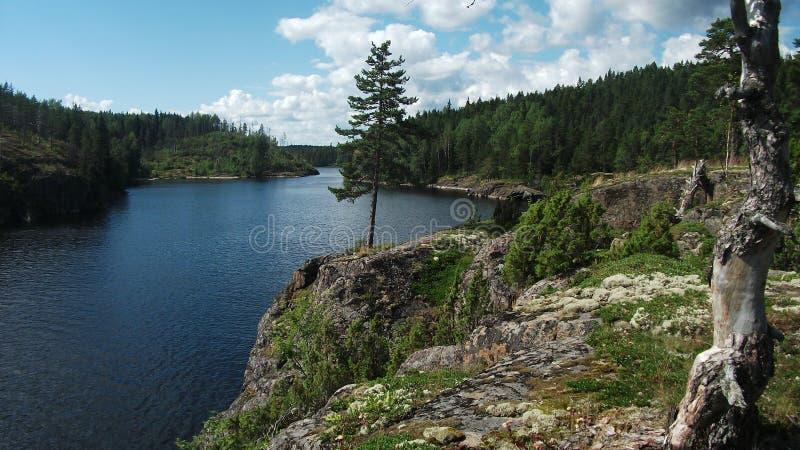 ladoga lake royaltyfri fotografi