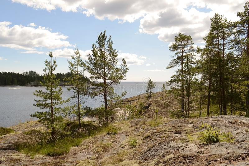 The Ladoga skerries, Karelia stock photography