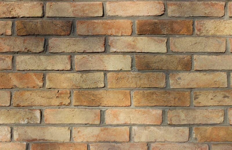 Ladrillo marrón claro viejo debajo de la sombra de las ramas de árbol Fondo perfecto para los papeles pintados de la foto foto de archivo