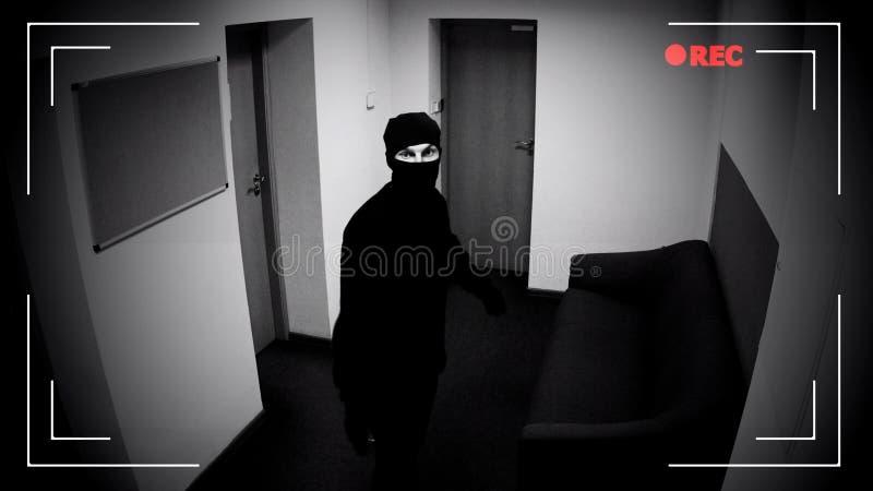 Ladro nella maschera che guarda videosorveglianza, protezione di costruzione corporativa fotografia stock libera da diritti
