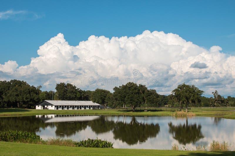 Ladugård för vit häst på lantgård med sjön och blå himmel fotografering för bildbyråer