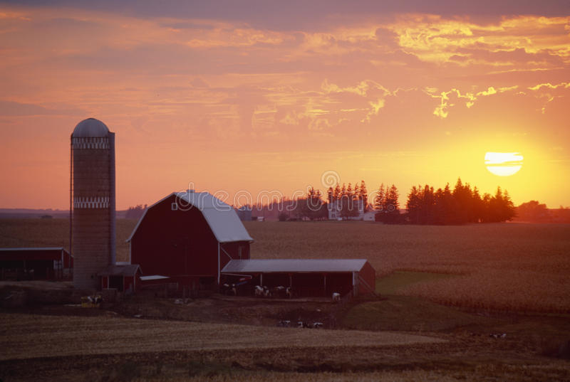 Ladugård och Silo på solnedgången, arkivbild