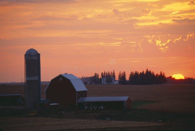 Ladugård och Silo på solnedgången arkivfoton