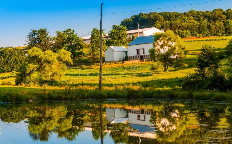 Ladugård och träd som reflekterar i ett litet damm på en lantgård i lantliga Yor royaltyfria foton