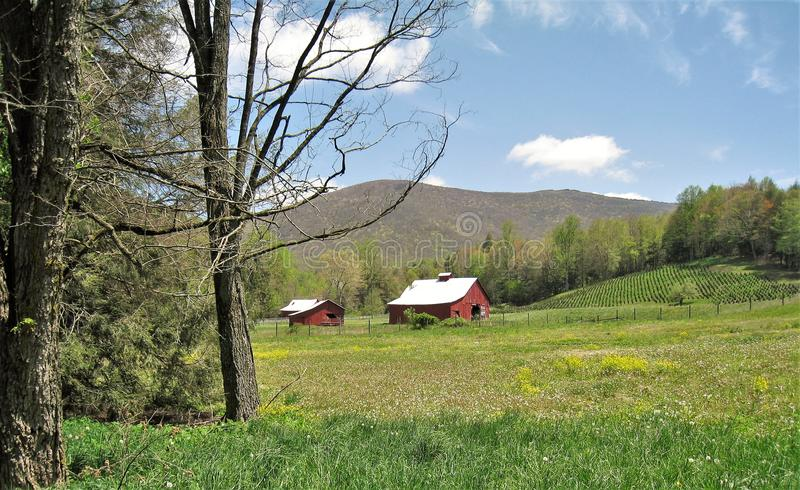 Ladugårdar längs Virginia Creeper Trail royaltyfri bild