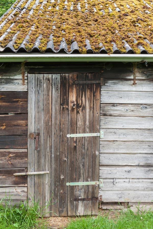 Ladugårddörr och tak som räknas med moss fotografering för bildbyråer