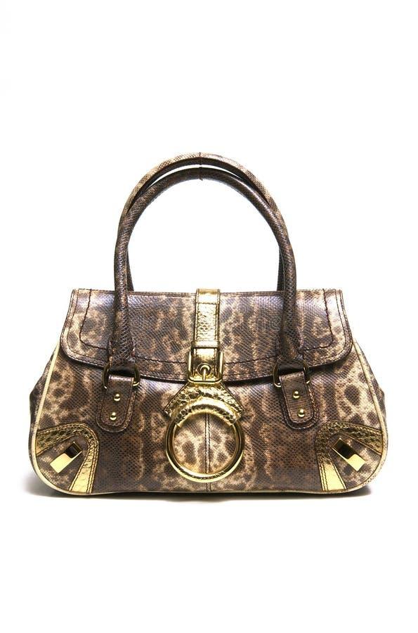 Lady bag stock image