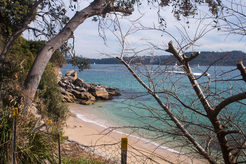 Lady Bay Beach Sydney royalty free stock images
