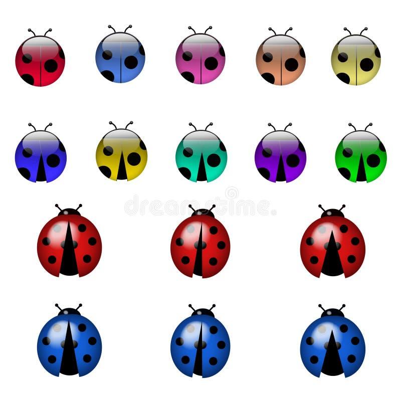 Lady bug colorful stock image