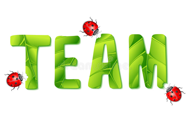 Lady Bug eating Team vector illustration