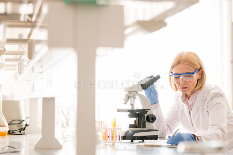 Lady busy with biological research royalty free stock photos