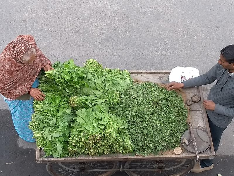 Lady buying leafy vegetables royalty free stock photography