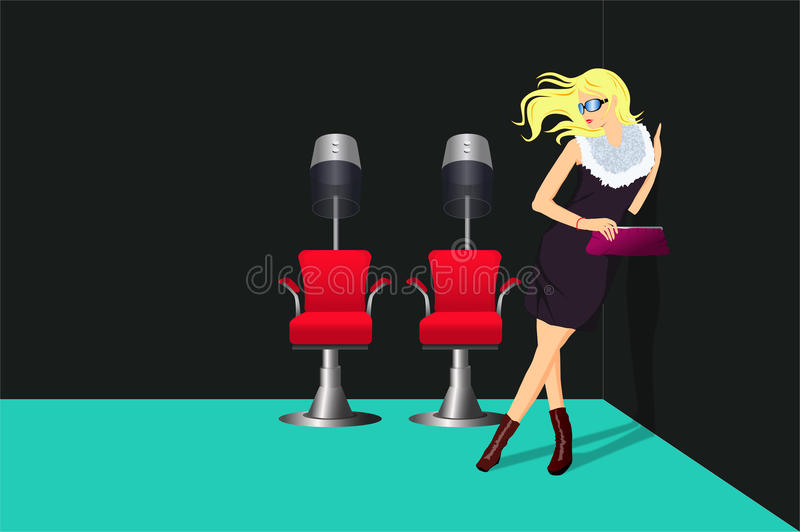 Download Lady In The Hairdressing Salon Stock Vector - Image: 16540348