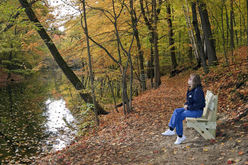 Download Lady Hiker Resting stock photo. Image of hiking, stop - 11560388
