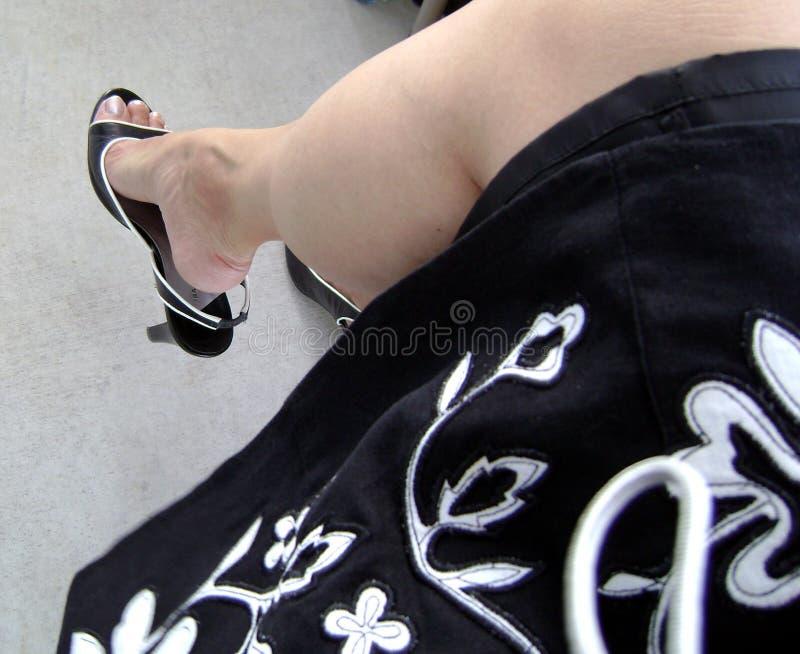 Lady Like stock photos