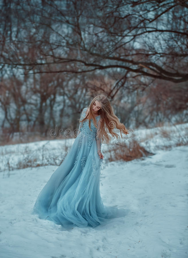 Lady in a luxury lush blue dress royalty free stock images